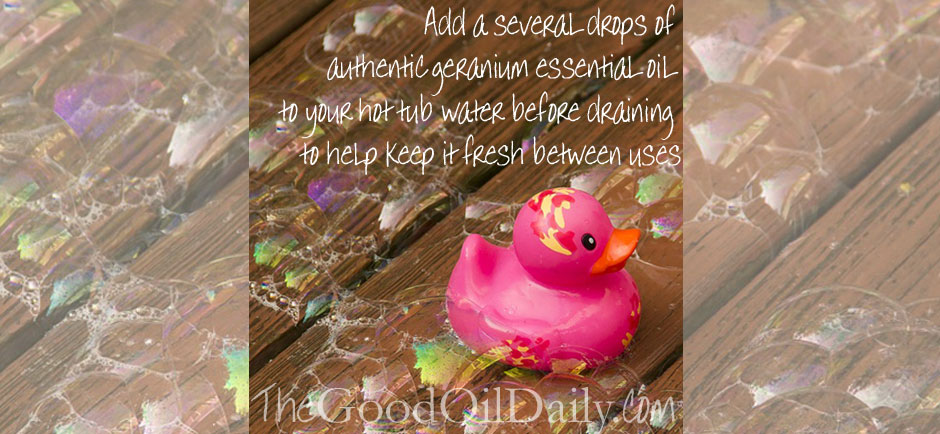 Essential Oil Cleaning Tips : Freshen your Hot Tub – The Good Oil ...