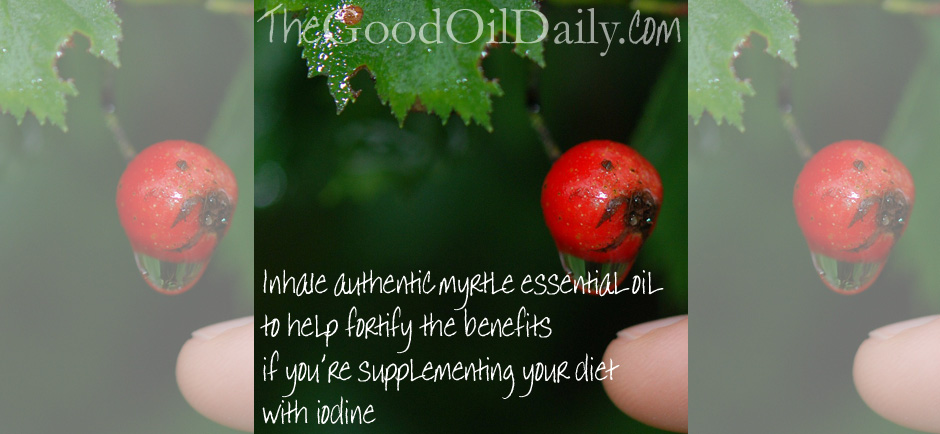 Boost Your Iodine Supplement with Essential Oils – The Good